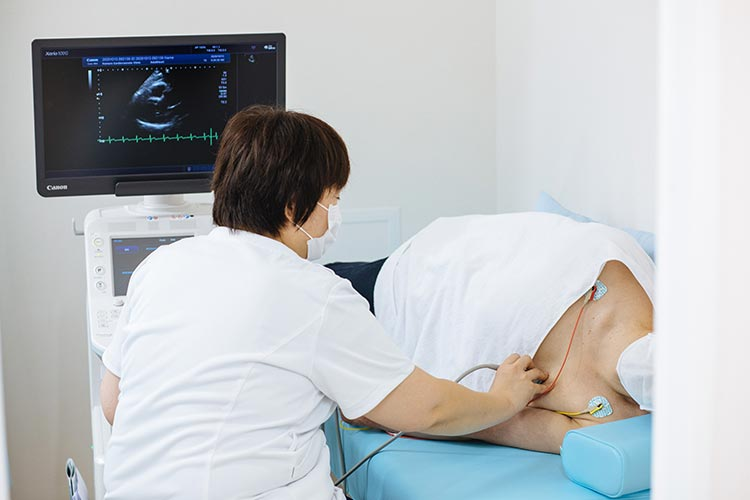 腹部心臓頸動脈エコー測定